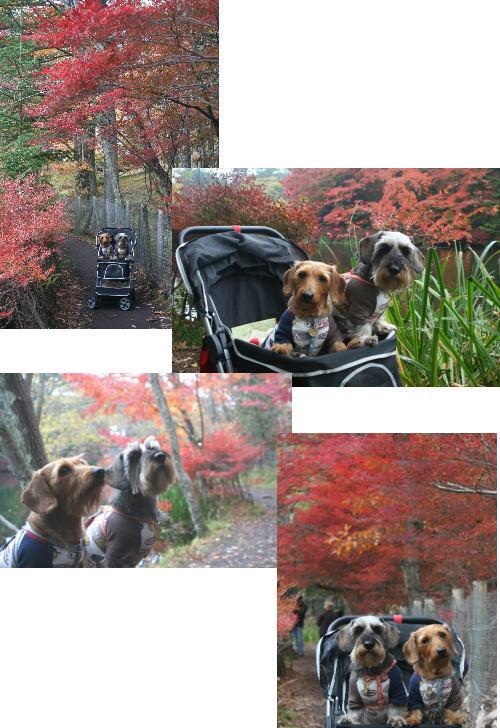 2009-10-24-3.jpg