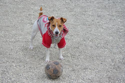 サッカーしたよ