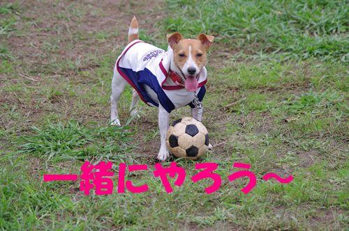 サッカーするよ