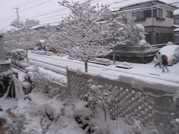 大雪1001131