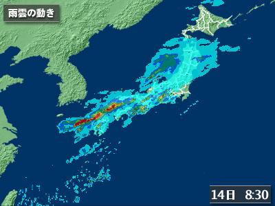 雨1007131