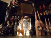 【バンブークラブ】の猫達