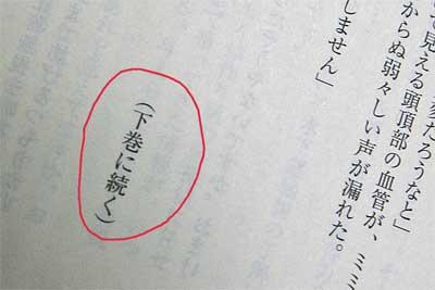 20100108_04.jpg