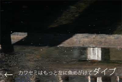 20100109_01.jpg