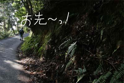 20100213_04.jpg