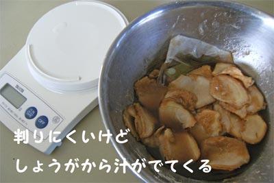 20100303_07.jpg