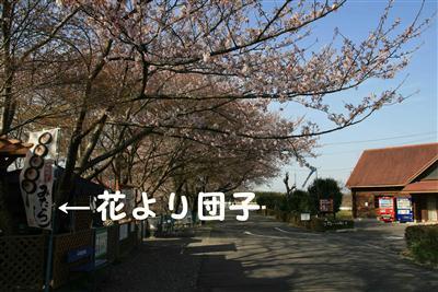 20100403_04.jpg