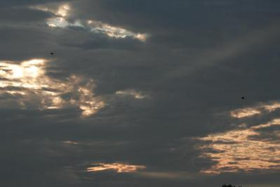 20100706_01.jpg