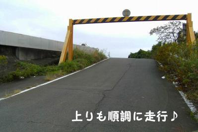 20101021_03.jpg