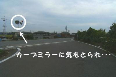 20101021_04.jpg