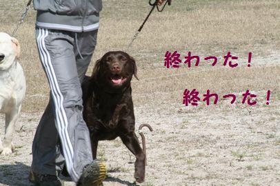 ニクス (4)
