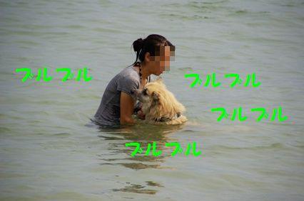 強制水泳3