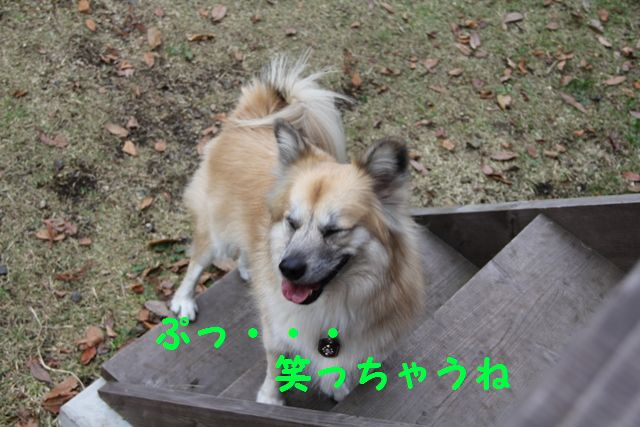 IMG_4099.jpg