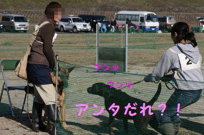 IMG_5188.jpg
