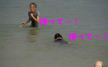 _IGP9941.jpg
