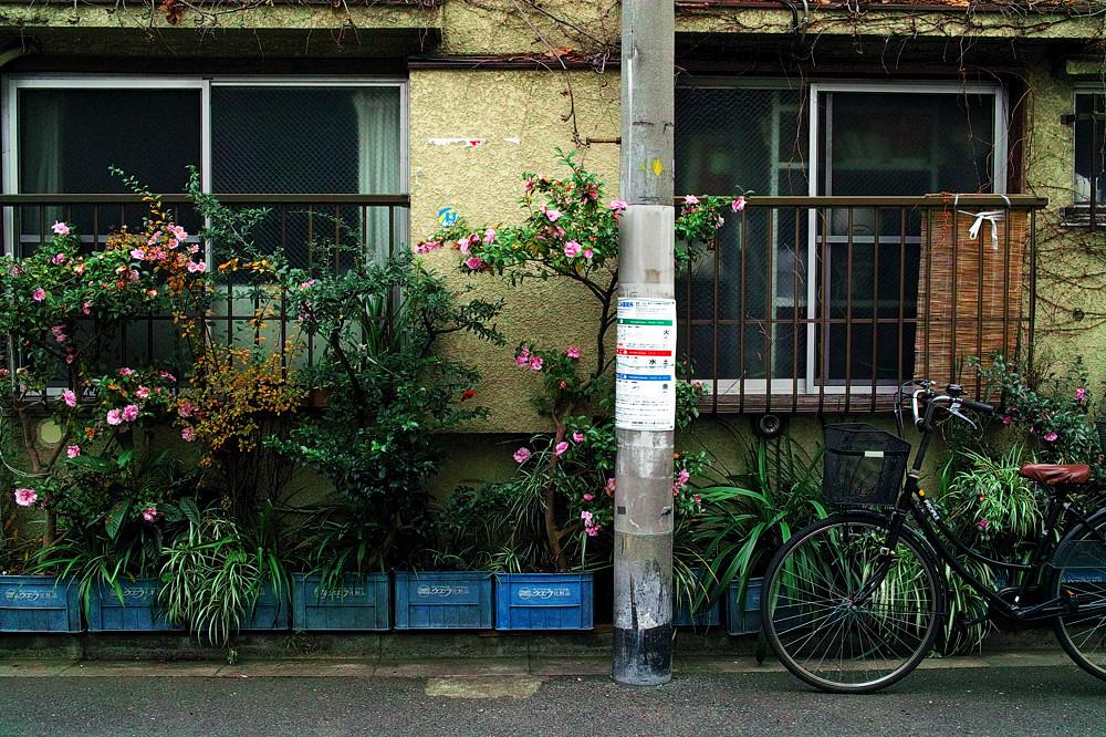nihondutsumiDP2-006.jpg