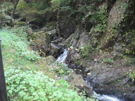 IMG_0054化石発掘地川