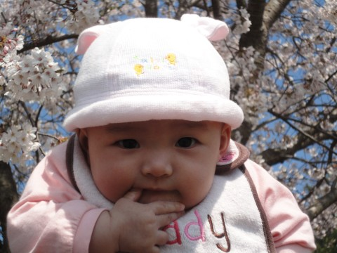 runasakura.jpg