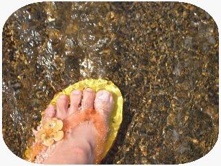 浜地の海水