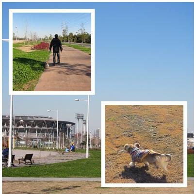 運動公園 2