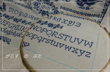 CIMG1539.jpg