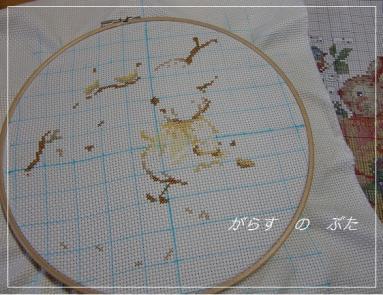 CIMG1580.jpg