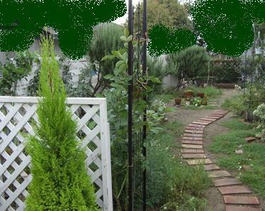 ガーデン アーチ2