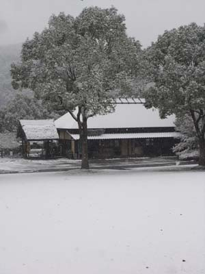 雪200908
