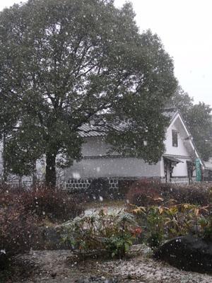 雪201001