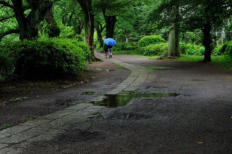 下池遊歩道2_