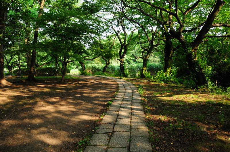 下池遊歩道_20110618_18