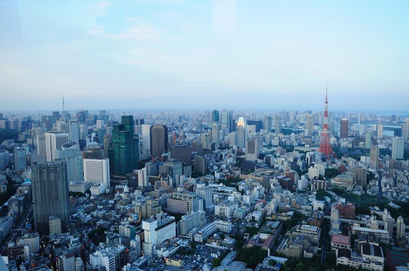 スカイツリーと東京タワー_