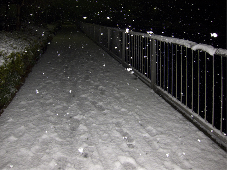2010雪_7