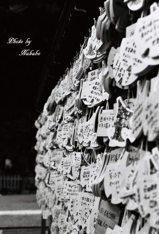 Kamakura_mono_16.jpg