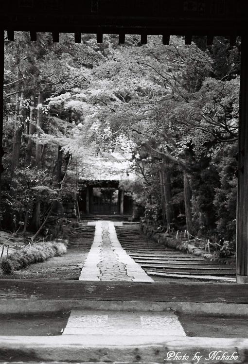 Kamakura_mono_19.jpg