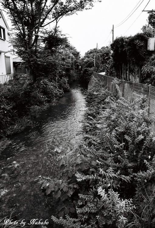 Kamakura_mono_7.jpg