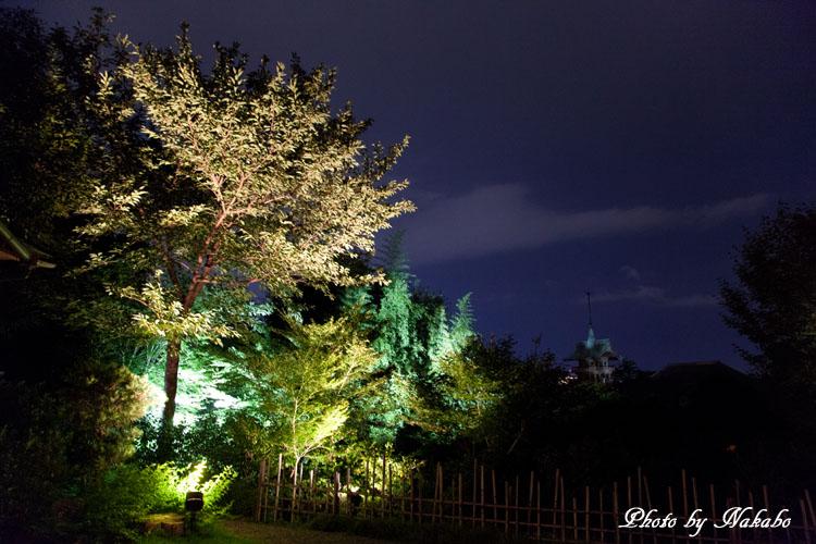 Kyoto-111.jpg