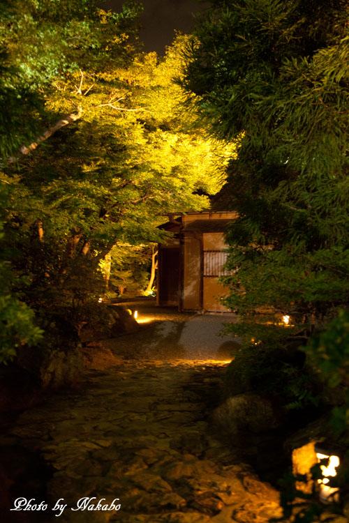 Kyoto-112.jpg