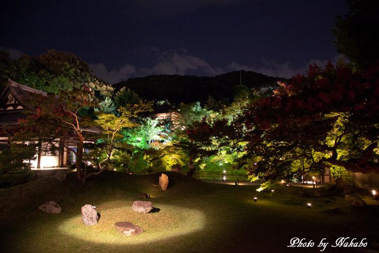 Kyoto-115.jpg
