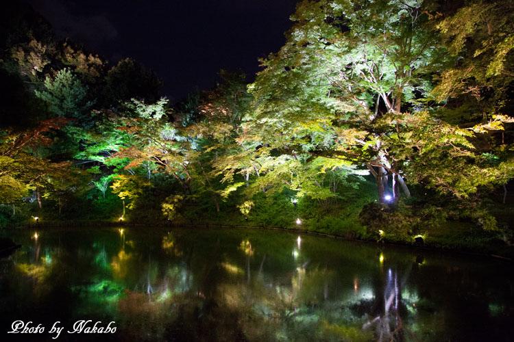 Kyoto-116.jpg