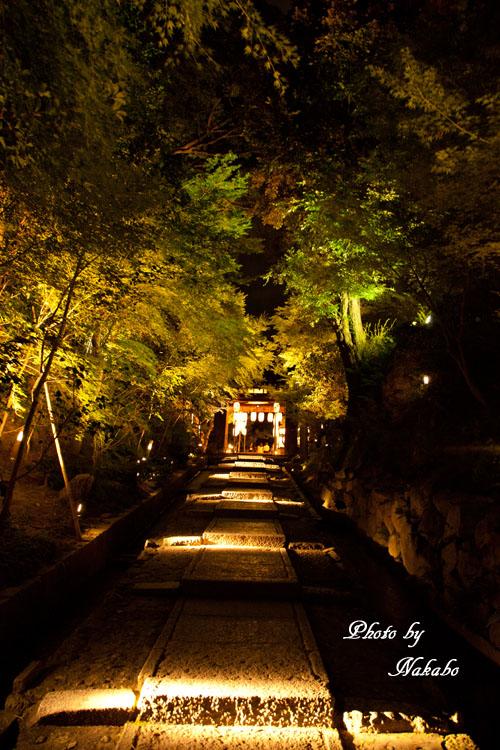 Kyoto-125.jpg