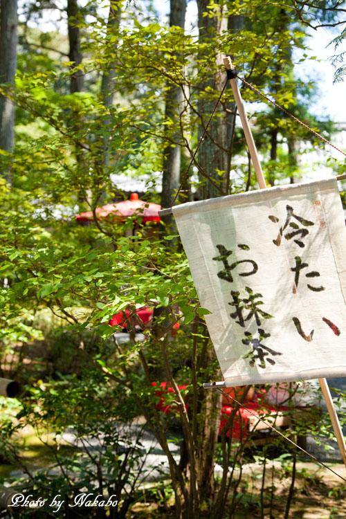 Kyoto-81.jpg