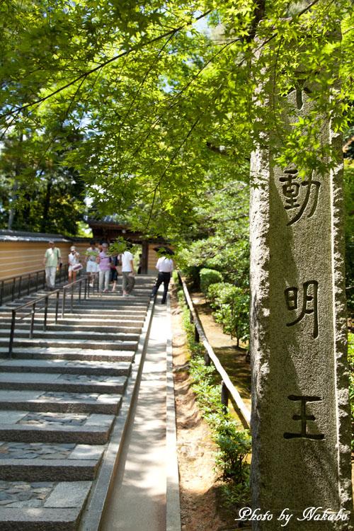 Kyoto-85.jpg