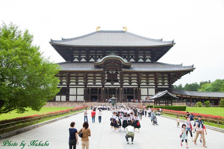 Nara17.jpg