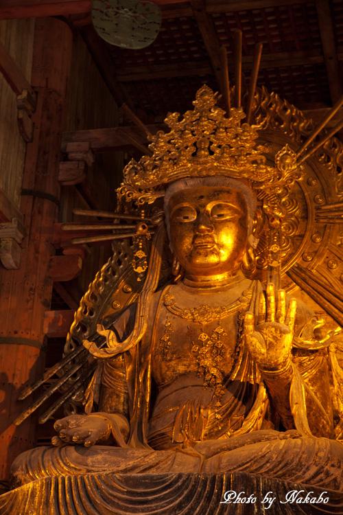 Nara19.jpg