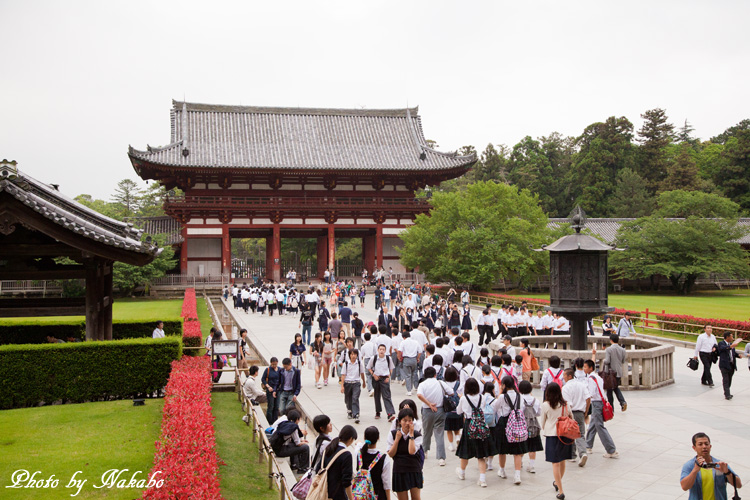 Nara22.jpg
