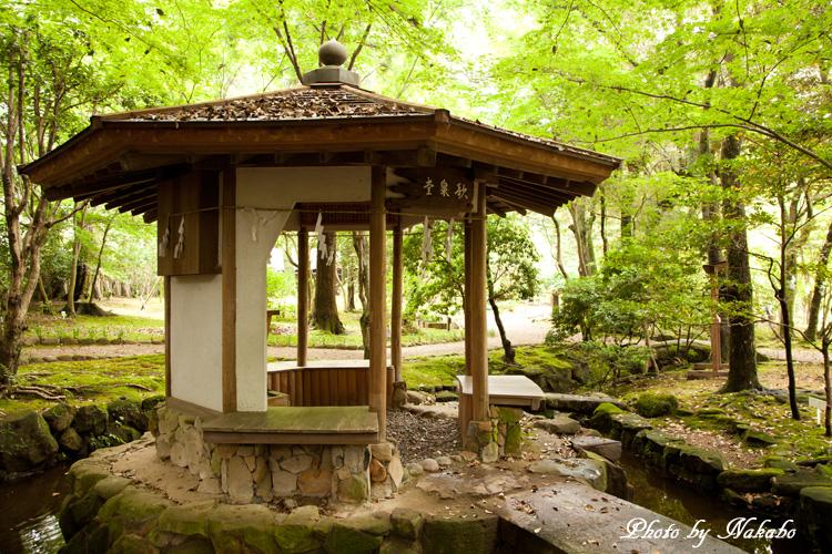 Nara38.jpg