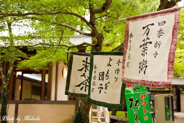 Nara44.jpg