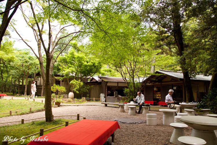 Nara45.jpg