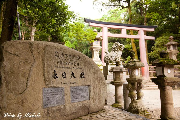 Nara48.jpg